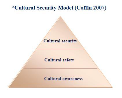 cultural security model