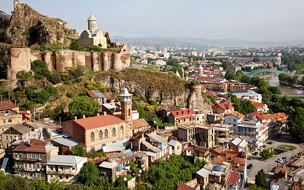 The Visit of Georgian Diaspora to Tbilisi